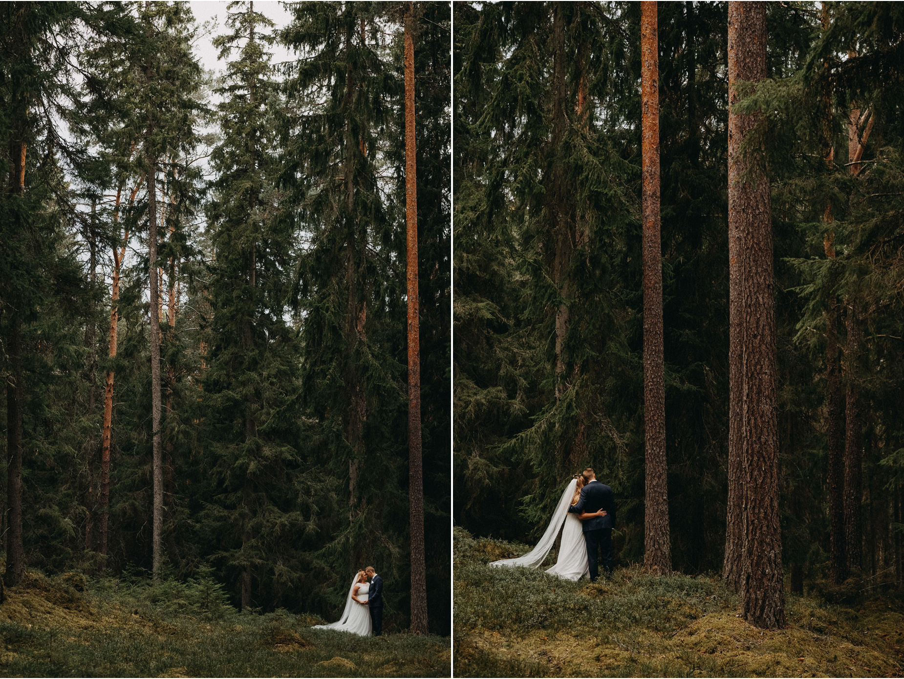 Bröllopsfotografering i småländsk gammelskog - wedding photography in the forest